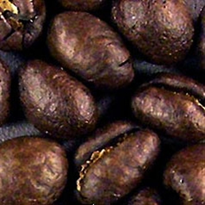 Picture of Guatemala Carrizal - Washed - Roasted