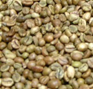Picture of Brazil Sao Francisco - Natural Dried - Green Beans