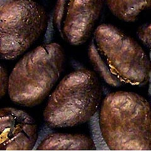 Picture of Ethiopia Natural Harrar Organic - Roasted