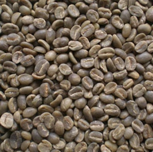 Picture of Sumatra Lintong Grade 1 - Semi-Washed - Green Beans